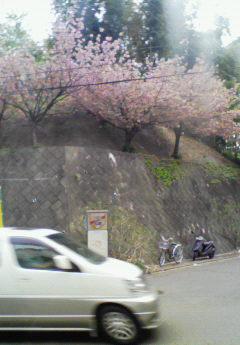 R246 を渋谷方j面へ行く途中