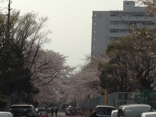 iphone/image-20130324205116.png